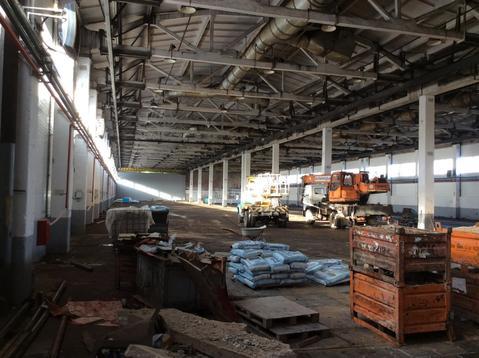 Продам складской комплекс 7500 кв.м. - Фото 3
