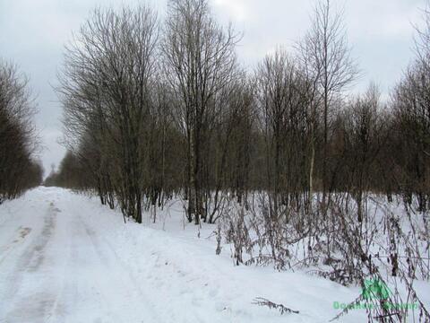 3,7 Га в д.Акулово под сельхоз.производство - 95 км Щёлковское шоссе - Фото 2