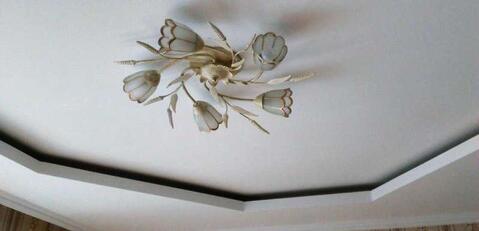 Шикарная бабочка в центре Северного - Фото 4