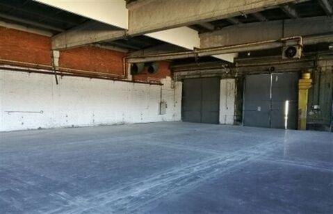 Сдам складское помещение 3500 кв.м, м. Звездная - Фото 2