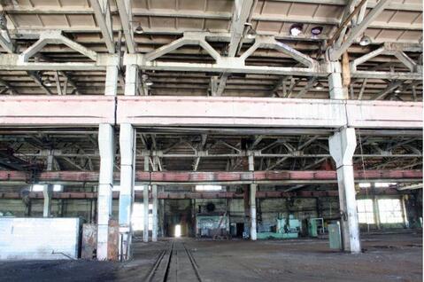 Сдам производственный цех 14 968 кв.м. - Фото 2