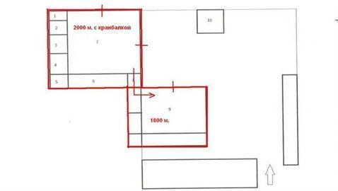 Сдам складское помещение 1400 кв.м, м. Ленинский проспект - Фото 5