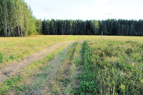 Зем. участок 10 соток, дл дачного строительства, с. Малобрусянское - Фото 4