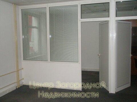 Аренда офиса в Москве, Цветной бульвар, 152 кв.м, класс B. м. . - Фото 4