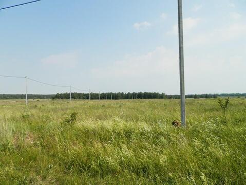 Симоново село участок 50 сотки Заокский район Тульская область - Фото 2