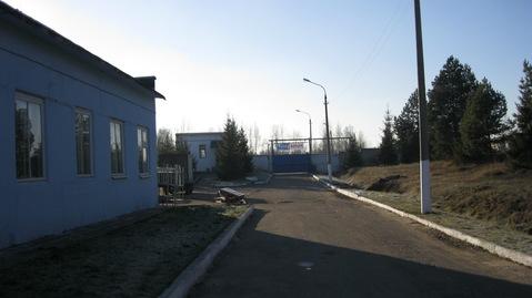 Продается завод в Истринском районе МО - Фото 4