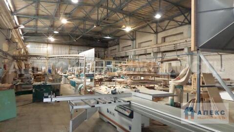 Аренда помещения пл. 890 м2 под производство, площадку, склад, , офис . - Фото 4