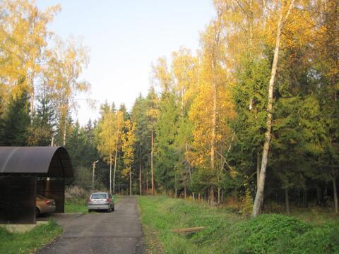 Кубинка - 60. Лесной участок 12 соток со всеми коммуникациями. - Фото 2