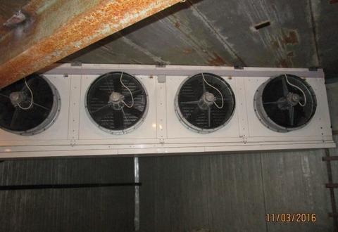 Холодильная камера,144 м2 - Фото 5