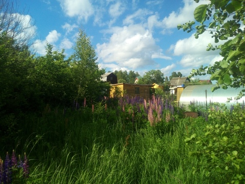 8 соток в СНТ Люторка Домодедовского района - Фото 3