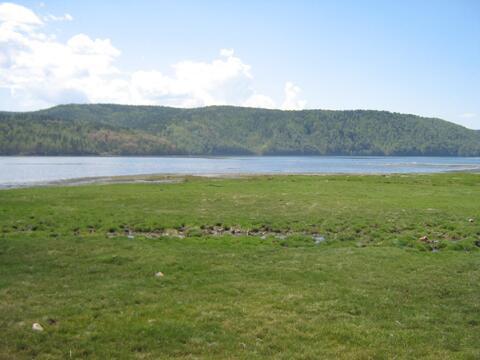Великолепное место для отдыха и уединения с природой. Большая Речка. - Фото 2