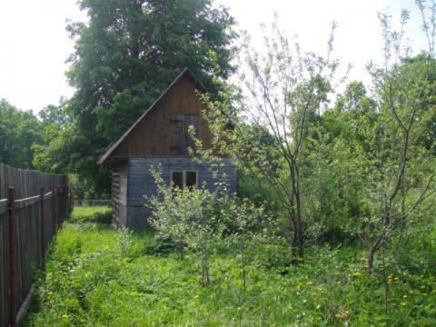Шикарный прилесной участок 50 соток в тихой жилой деревне. ПМЖ. - Фото 5