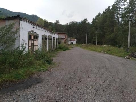 Продается участок на берегу р.Катунь без соседей! - Фото 2