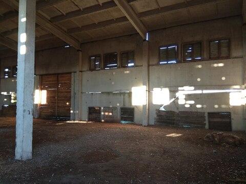 Животноводческий комплекс 8000 кв.м. - Фото 2