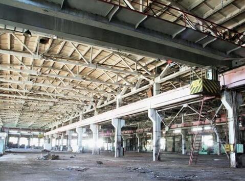 Сдам производственный цех 14 968 кв.м. - Фото 1