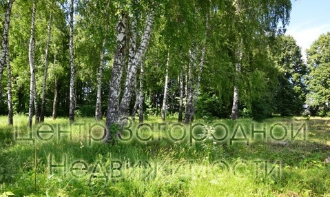 Участок, Калужское ш, Варшавское ш, 35 км от МКАД, Песье д. . - Фото 3