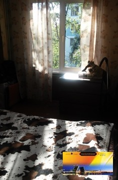 Двухкомнатная Квартира в Хорошем состоянии по Доступной цене! - Фото 3