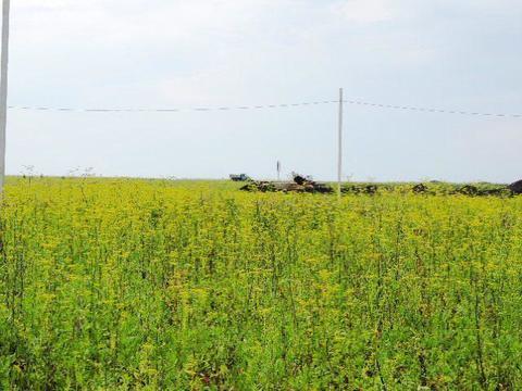 Горный Щит участок 15 соток земли населенных пунктов - Фото 3