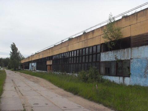 Готовое производство 20 000 кв.м. - Фото 1