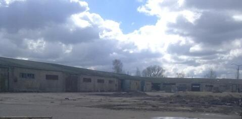 Продажа производственно-складских зданий 4770 м2, п. Михнево, . - Фото 2