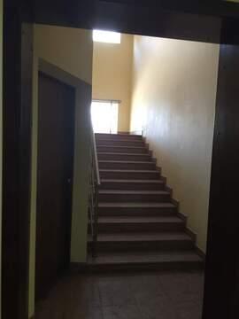 Сдается офис 1203 кв.м, м2/год - Фото 2