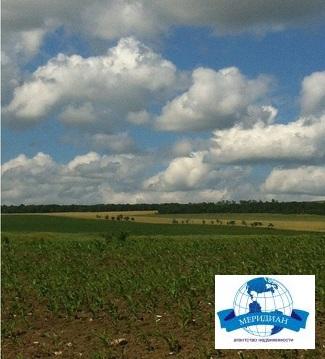 С/хоз. земля с мельницей - Фото 2