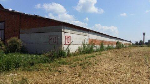 Продажа базы 9,5 га, склады - Фото 3