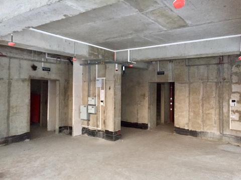 Аренда помещения (псн) 274.9 кв.м. Варшавское шоссе, 120, корпус 3 - Фото 3