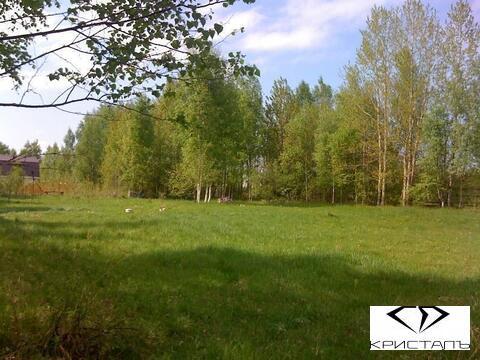 Земельный участок 2.5 га, 15 км от Всеволожска - Фото 3