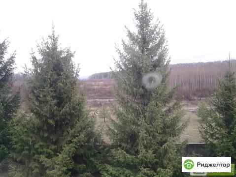 Аренда дома посуточно, Липитино, Ступинский район - Фото 3