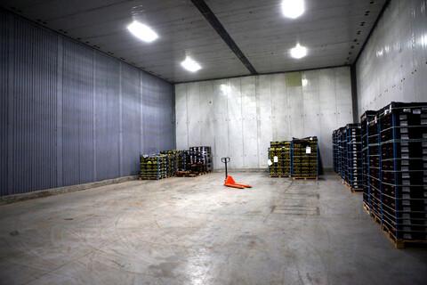 Сдается теплый склад 932м2 в п. Тельмана, Тосненский район - Фото 4