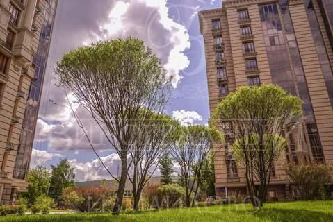 Детский центр, 343.7 м2, м. Измайловская - Фото 1