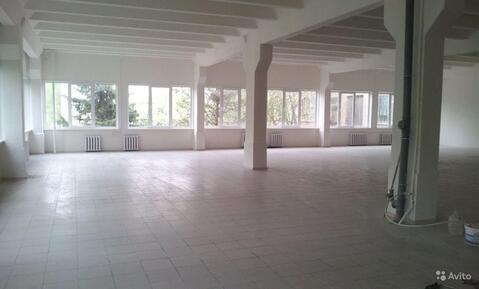2 помещения на первом этаже для чистого производства или склада - Фото 1