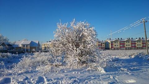Малое Карлино, Виллозское поселение - Фото 2