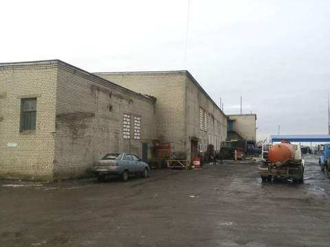 1200 м2 кран-балки на 3,2 т+офисный блок 300 м2 - Фото 3