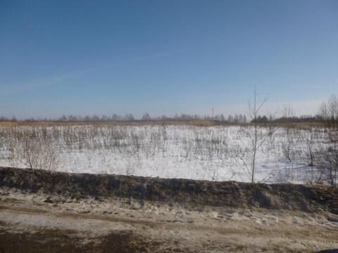 1 гектар сельхоз земли, рядом с г. Кимры в 10 мин. ходьбы до р. Волга - Фото 3