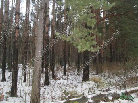 Волоколамское ш. 18 км от МКАД, Дедовск, Участок 12 сот. - Фото 5