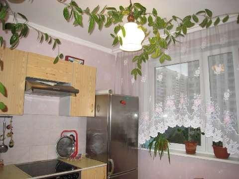 Аренда квартиры, м. Новокосино, Ул. Новокосинская - Фото 1