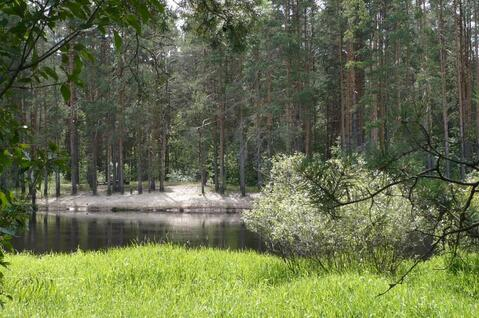 Участок на берегу реки Пра в д.Взвоз, Клепиковского района. - Фото 5