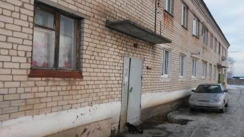 Продам 2-х ком.кв. в селе Лопатино 25 км от Тольятти - Фото 1