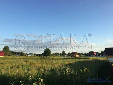 Продажа участка, Красные Череповицы, Волосовский район - Фото 2