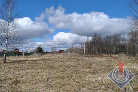 Земельный участок в СНТ у д. Порядино - Фото 5