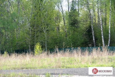Участок 15 соток около леса и реки, Калужское ш, 25 км от МКАД - Фото 4