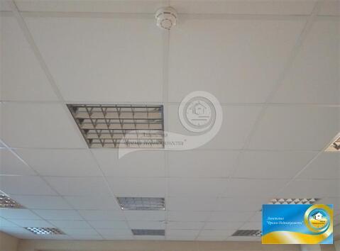 Продается коммерческое помещение, площадь: 110.90 кв.м, г. Светлый, . - Фото 3