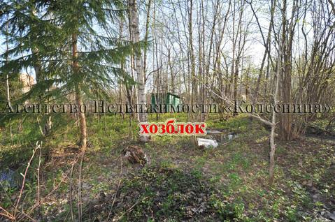Ореховка. Лесной участок 20 соток с 2-этажным срубом дома, срубом бани - Фото 5