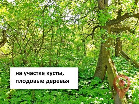 Объявление №43224620: Продажа участка. Санкт-Петербург