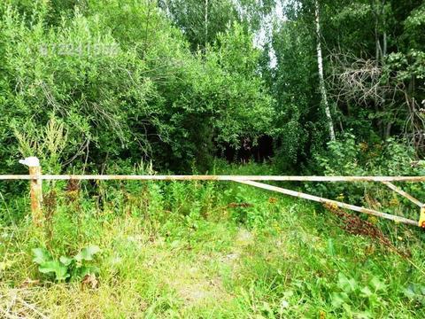 Участок в д. Головино, рядом р. Волга, лес. Кимрский район - Фото 4