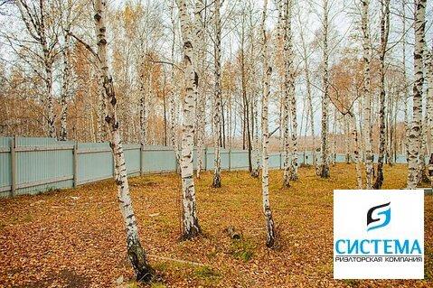 Участок 35 сот. Байкальский тракт 8 км - Фото 3