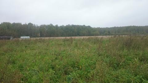 Продам земельный участок под лпх в новой Москве. - Фото 3
