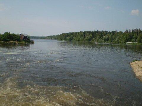 Конаково, лес, вода - недорогая земля в СНТ Малиновка - Фото 4